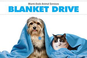 pet-blanket-drive